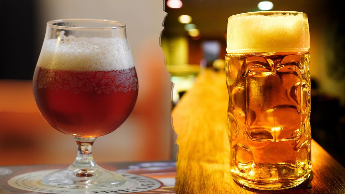 29. Az ale és a lager sörök